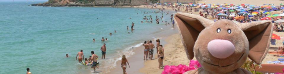 Strand Costa de la Luz Puerto Cherry Puerto Sta. Maria