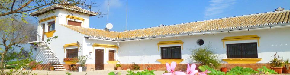 Finca_Landhaus_Reitimmobilie_Pferdehaltung_Jerez de la Frontera_Provinz Cadiz_Andalusien_zu_kaufen_verkaufen