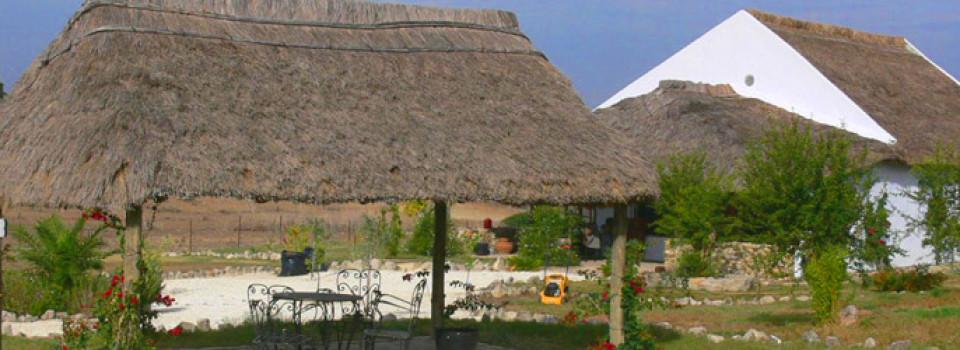 _Finca_Reitimmobilie_Pferdehaltung_Haus auf dem Land_Chiclana de la Frontera_Provinz Cadiz_Costa de la Luz_verkaufen