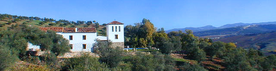 _Finca_renovierte Ölmühle_Landhaus_Spezialimmobilie_Oliven_Ronda_Provinz Malaga_Andalusien_Süd-Spanien_zu_kaufen_verkaufen