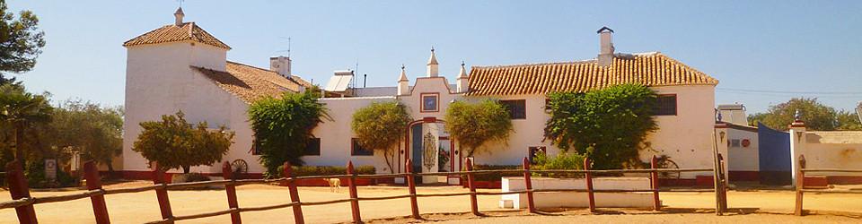 Spanien_Andalusien_Sevilla_Reithotel_Hacienda_andalusischer Cortijo_Reitimmobilie_Reiterhof_Reitstall_Tourismus_zu verkaufen