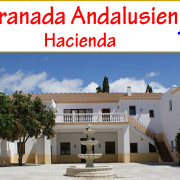 _country_horse_equestrian_property_estate_hacienda_cortijo_finca_horsestable_hotel_turism rural_inland_Granada_Andalusia_for_sale_to_buy