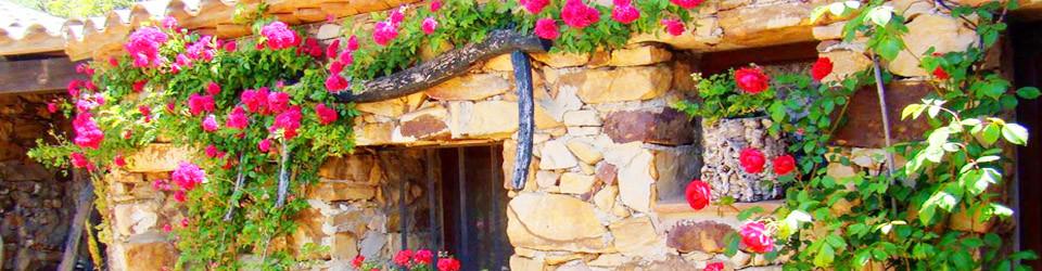 _Finca_Pferdehaltung_Haus_Tarifa_Andalusien_Costa de la Luz_zu_kaufen_verkaufen