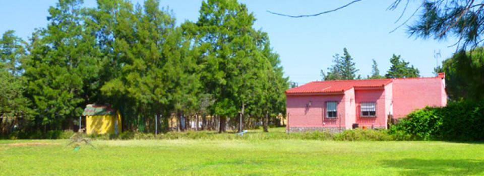 Haus, Ferienhaus, Chiclana, Costa de la Luz, Cadiz, Andalusien, zu verkaufen, kaufen
