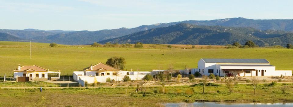 unglaubliches Schnäppchenangebot: 2 Häuser mit je 3 schlafzimmern, Pool, Halle auf 10.000 qm nicht weit von Arcos zu verkaufen