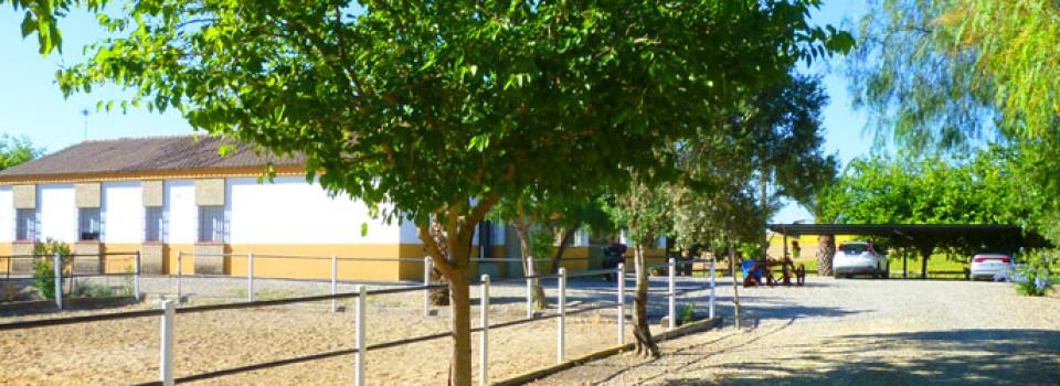 Reiterhof, Reitstall, Finca, Reitimmobilie, Jerez de la Frontera, Cadiz, Andalusien zu verkaufen
