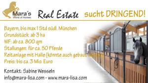 Reiterhof, Reitanlage, Reitstall,Deutschland, München, gesucht