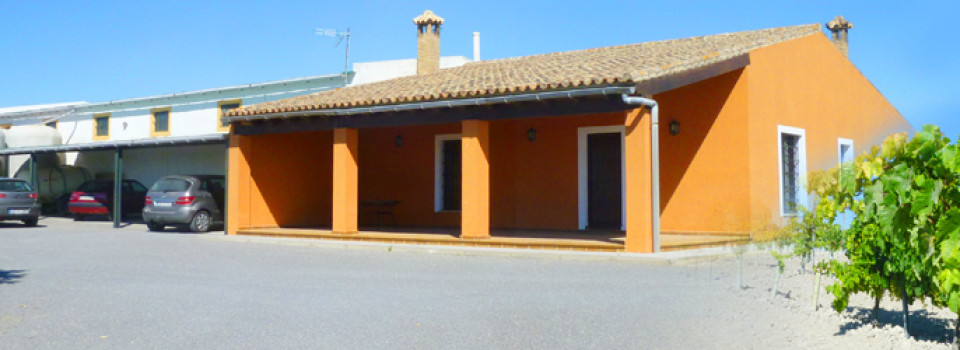 suche Olivenfarm, Olivenplantage, Weinberg, Jerez de la Frontera, Cadiz, Andalusien, zu verkaufen, zum kaufen