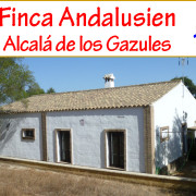 _country property for sale Andalusia_horse property for sale Alcala de los Gazules_farm to buy Andalusia_finca for sale southern Spain_country house for sale province Cadiz