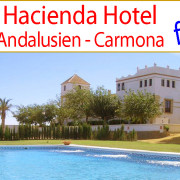 _looking_for_Real_Estate_country_horse_equestrian_property_estate_hacienda_cortijo_finca_farmhouse_events_hotel_turism_rural_inland_Andalusia_Sevilla_Carmona_for_sale_to_buy