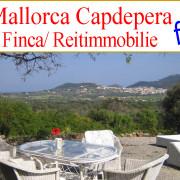 suche Finca zu kaufen auf Mallorca, nahe Capdepera