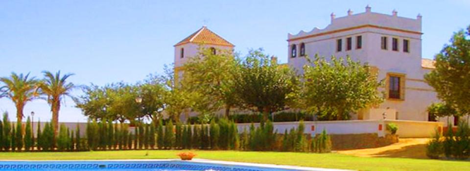 _suche_Immobilien_Andalusien_Sevilla_Carmona_Hacienda_Cortijo_Landsitz_Reitimmobilie_Reitstall_Pferde_Tourismus_Hotel_zu_kaufen_verkaufen