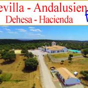 suche Hacienda zu kaufen nahe Sevilla Andalusien
