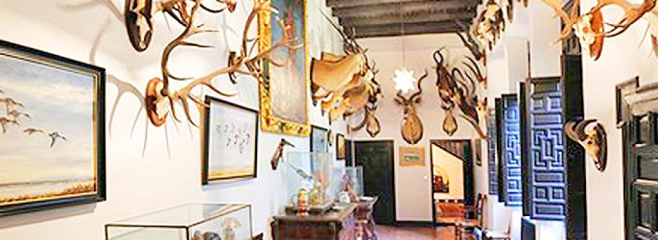_Landsitz_mit_Jagd_zu_verkaufen_Andalusien_Sevilla_Huelva _suche_Dehesa_für_Rinderzucht_in_Andalusien_Sevilla_Huelva_zu_kaufen _Dehesa_mit_Palast_bei_Huelva_Aracena_Sevilla_in_Andalusien_zu_verkaufen