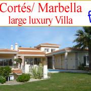 looking for Villa Costa del Sol Marbella Estepona Benahavis to buy