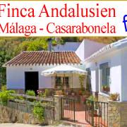 Finca rustica, casa de campo, Malaga, Casarabonela en venta