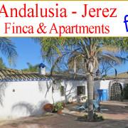 _se_vende_finca_rustica_casa_de_campo_turismo_rural_caballos_Jerez_Andalusia_en_venta