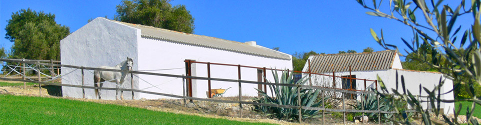 country horse property for sale in Arcos de la Frontera, Cadiz