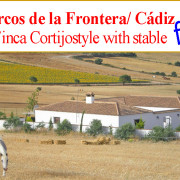 nice country property for horses Arcos de la Frontera, Cadiz for sale