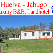 "Beautiful and Luxurious B&B near Aracena, Huelva, Spain Already the 90 minute drive on the ""Ruta de la Plata"" (the Silver Road) from Seville airport to this beautiful property is an exciting experience in itself."
