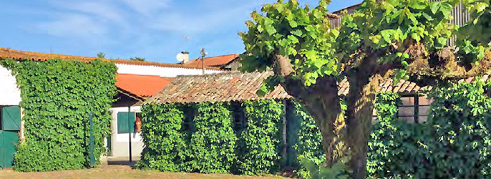 horseproperty for sale in Portugal