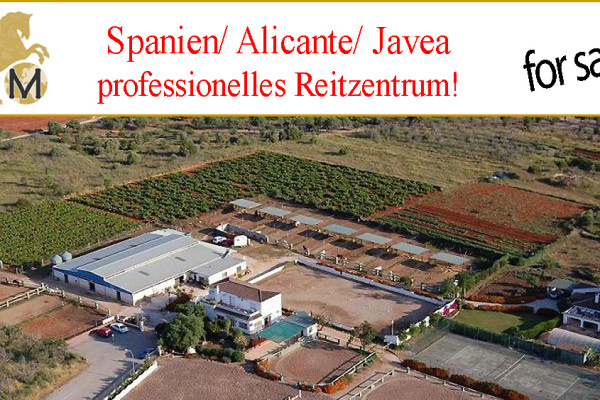 equestrian center for sale in Valencia, Alicante