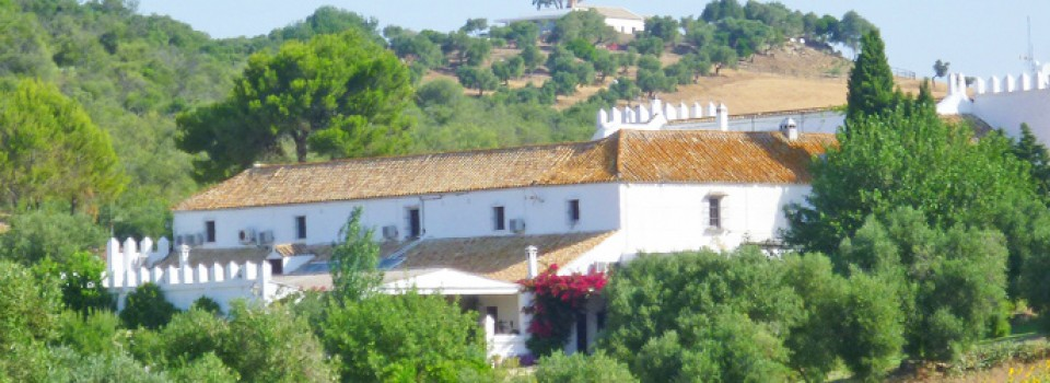 Traditional Andalusian Cortijo Hotel near Arcos de la Frontera, Cádiz, Spain, for sale