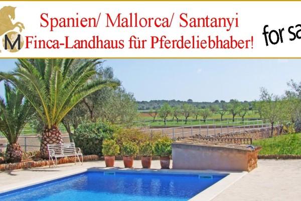 Luxusfinca, Mallorca, Pferdestall zu verkaufen