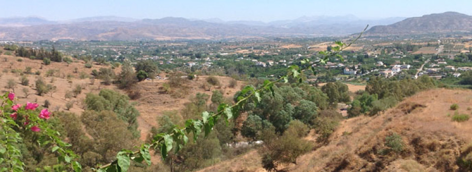 countryproperty in Alhaurin El Grande for sale
