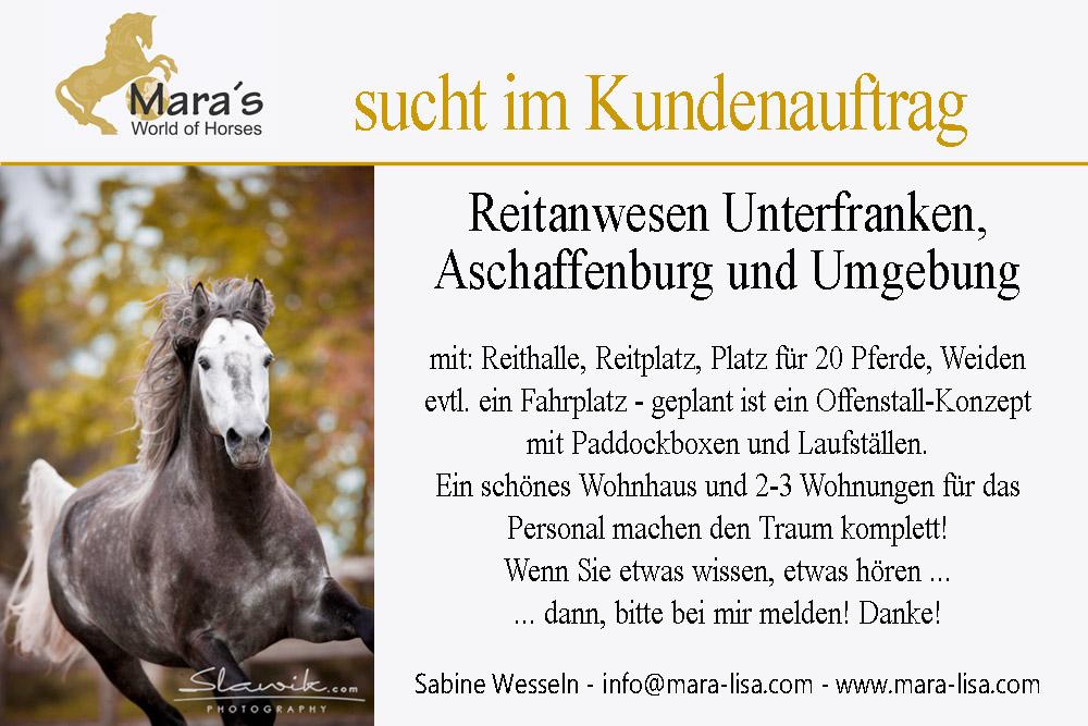 Suche Reiterhof Aschaffenburg Kopie