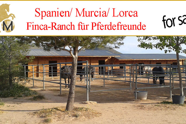 Finca mit Perdestall zu verkaufen in Lorca