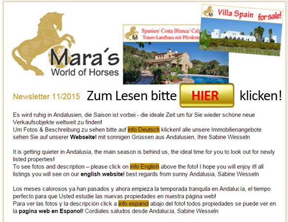 www mara-lisa newsletter Bild 11-15
