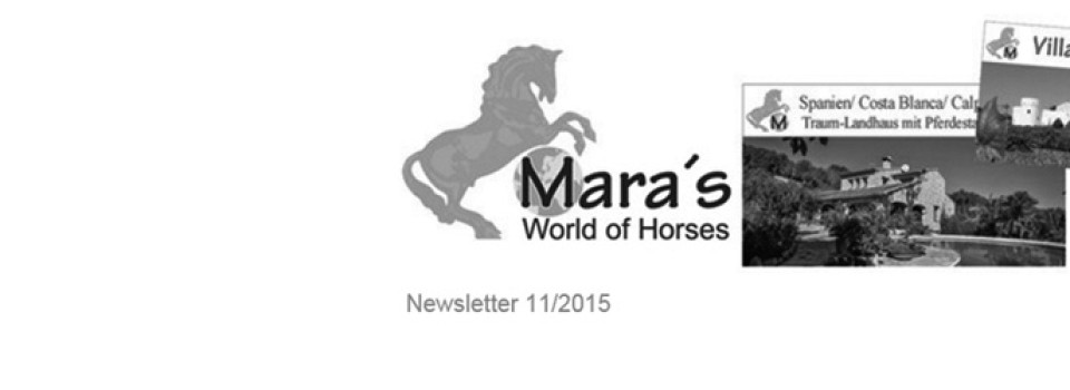 www mara-lisa newsletter thumbal