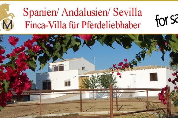 Haus mit Pferdestall bei Sevilla zu verkaufen