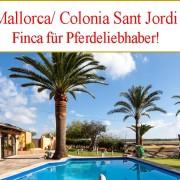 suche Finca nahe Strand Mallorca Ost zu kaufen