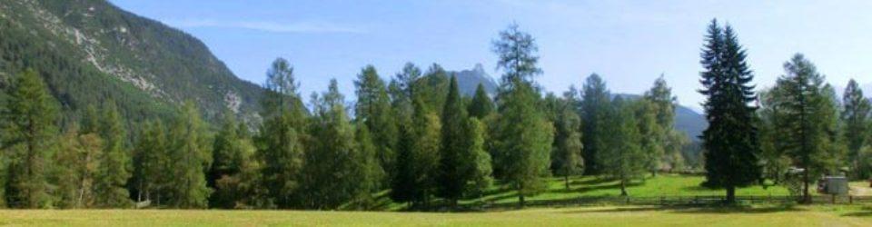 Grundstück Österreich Tirol Leutaschtal zu verkaufen