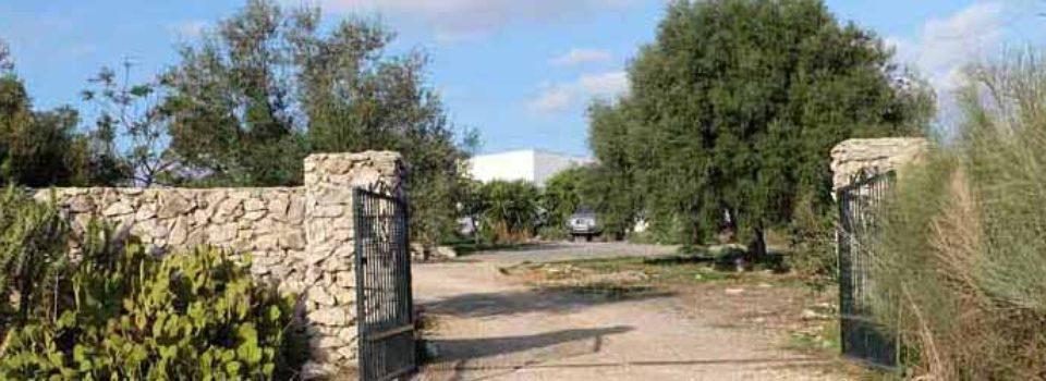Finca, Andalusien, Arcos de la Frontera zu verkaufen