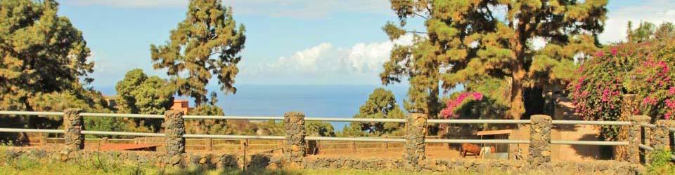 Finca, Landhaus Teneriffa zu verkaufen