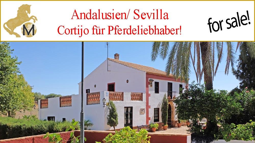 Finca, Gestüt in Carmona, nahe Sevilla zu verkaufen!