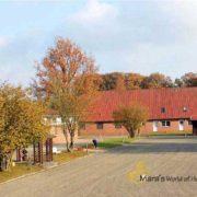 Reitanlage-Reithalle-Haus-Niedersachen-Osnabrueck-verkaufen