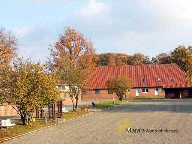 Reitimmobilie, Wohnhaus mit Stall, Reithalle und Reitplatz, Niedersachen, Osnabrück zu verkaufen!