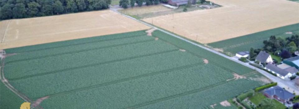 Grundstück für Reitanlage nahe Düsseldorf zu verkaufen